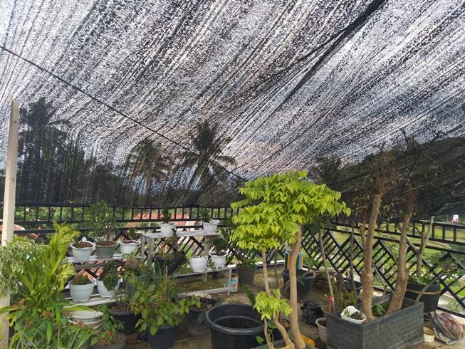 Net For Flower