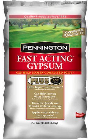 Pennington fast acting gypsum for Hydrangea