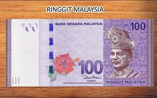 Hibiscus Malaysia symbolizes bravery