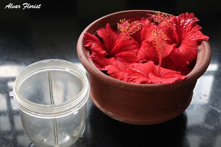 Hibiscus and Honey Firming Cream